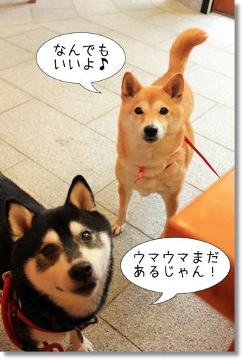 12_20120717040132.jpg