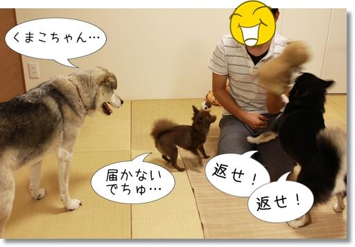 12_20120830104407.jpg