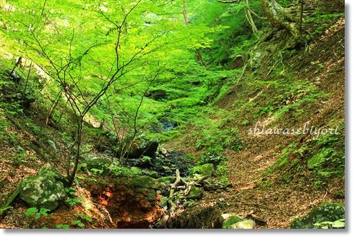 12_20120920143556.jpg