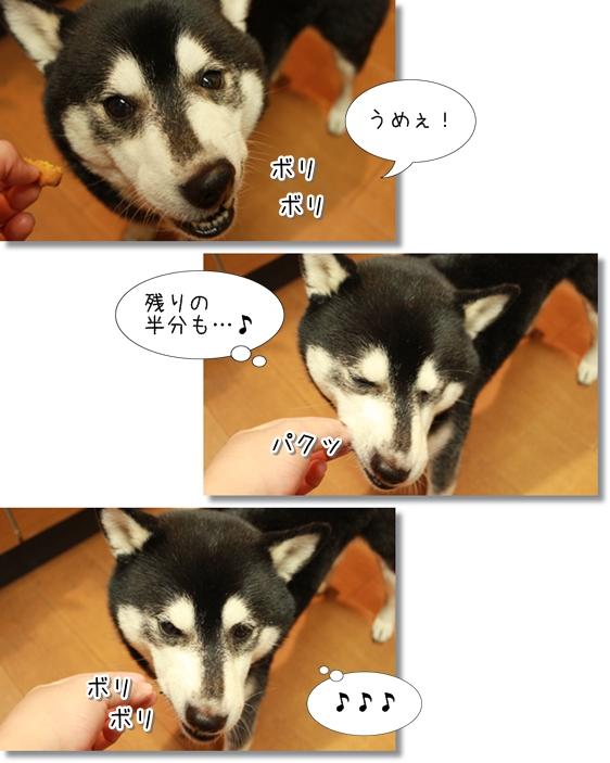 12_20121128042146.jpg