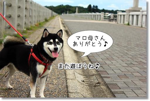 13_20120929024522.jpg