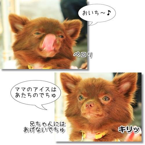 13_20121024030735.jpg