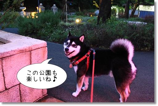 14_20120530032131.jpg