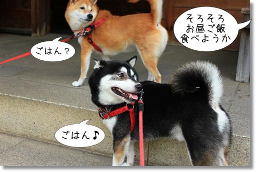 14_20120715210243.jpg