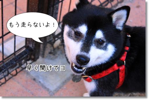 14_20120718150649.jpg