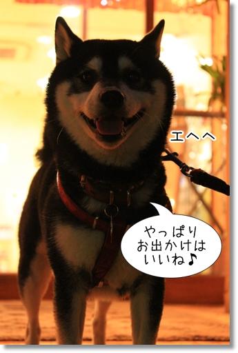 15_20120530032130.jpg