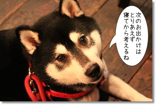 15_20120620141240.jpg