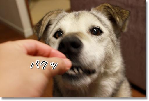 15_20120903044216.jpg