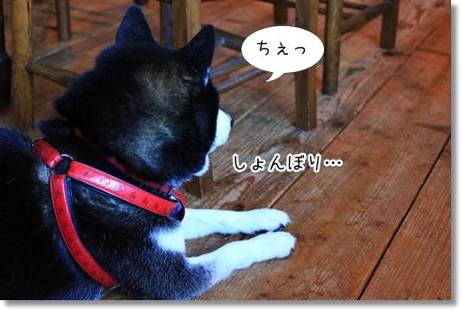 15_20121017181145.jpg