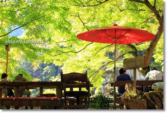 15_20121207024327.jpg