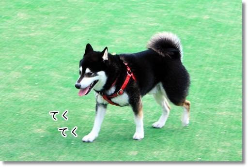 16_20120604033744.jpg