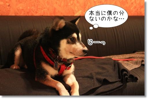 16_20120812170515.jpg