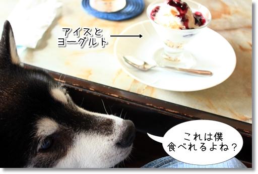 16_20120926160034.jpg