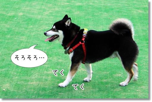 17_20120604035505.jpg