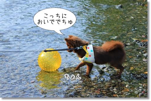 17_20120810145255.jpg