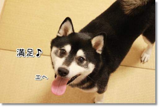 17_20120830105312.jpg