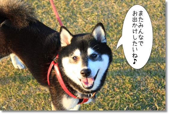 18_20121220033819.jpg