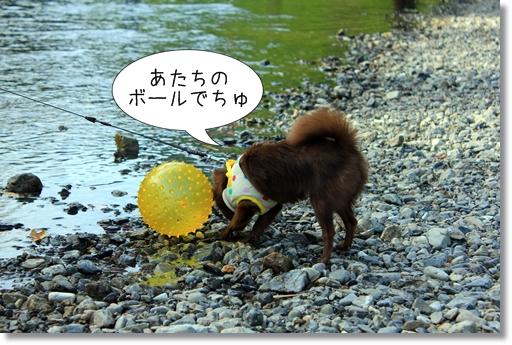 19_20120810150642.jpg