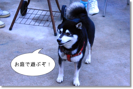1_20120504210751.jpg