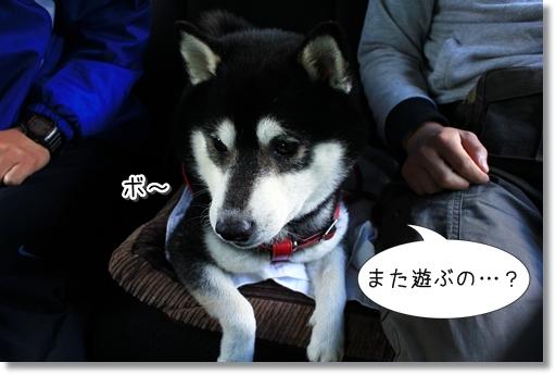 1_20120619154640.jpg