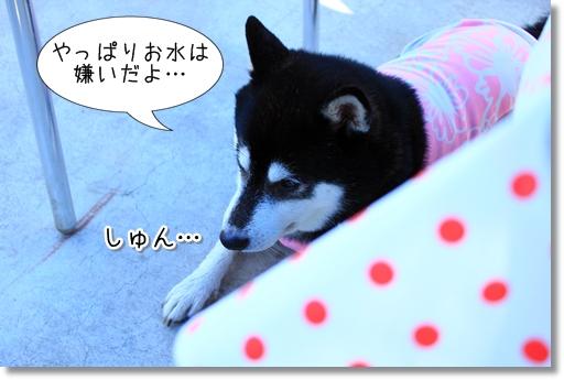 20_20120915022140.jpg