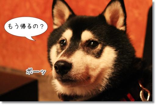 23_20120812172126.jpg