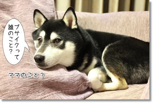 2_20120624005332.jpg