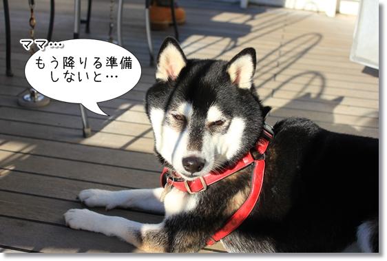30_20121227170517.jpg