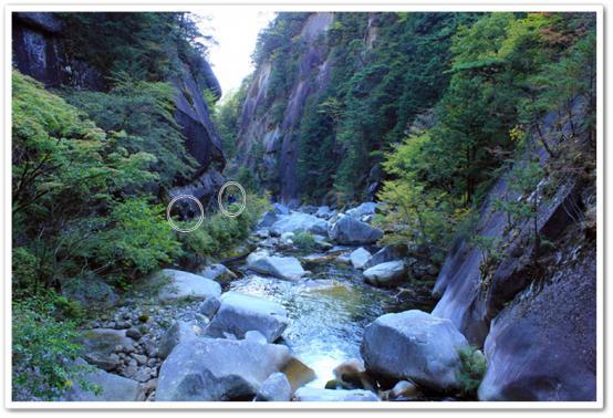 31_20121207032915.jpg