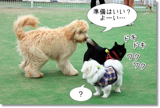 3_20120521014147.jpg