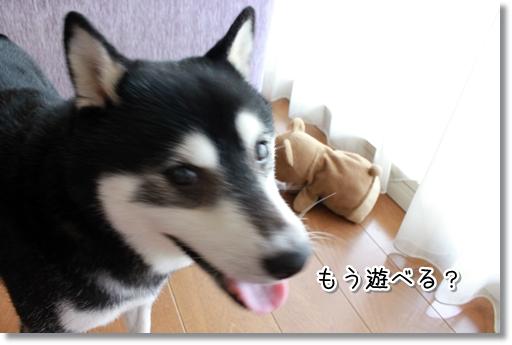 3_20120816161522.jpg