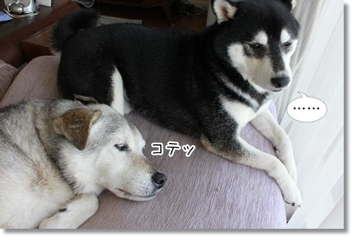 3_20120904043620.jpg