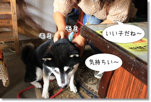 3_20120926153456.jpg