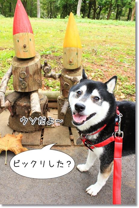 3_20121125023649.jpg