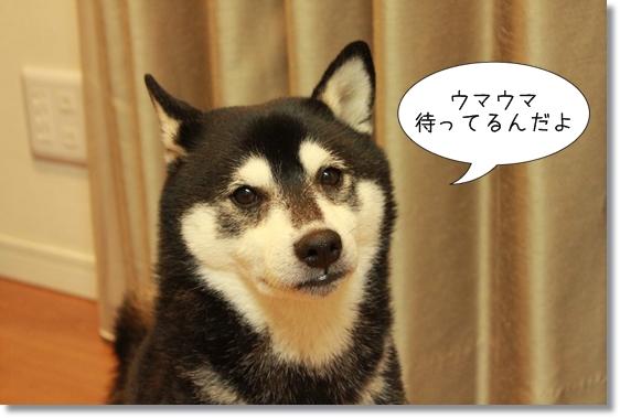 3_20121128041049.jpg