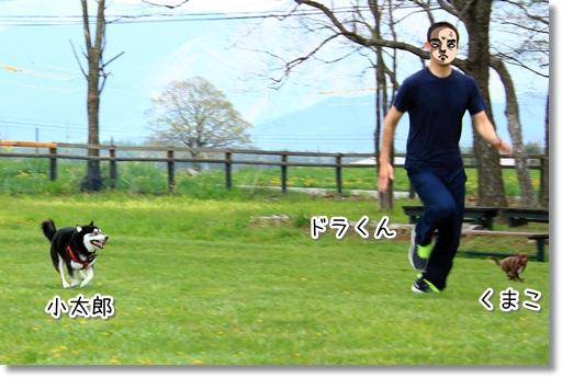 4_20120616025243.jpg