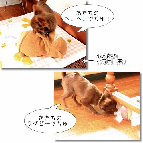5_20120610024037.jpg