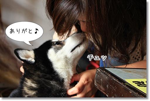 5_20120926153455.jpg