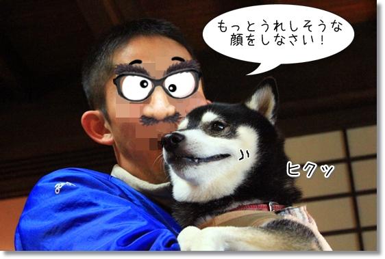 5_20130111085250.jpg