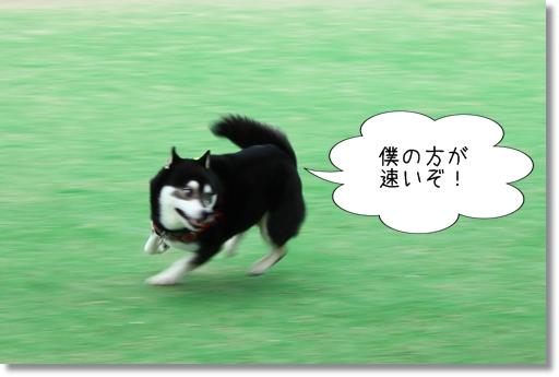 6_20120521014145.jpg