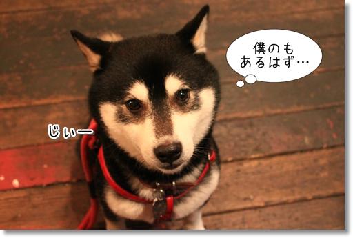 6_20120620134825.jpg