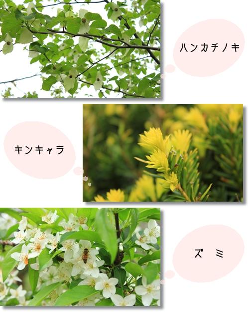7_20120524030516.jpg