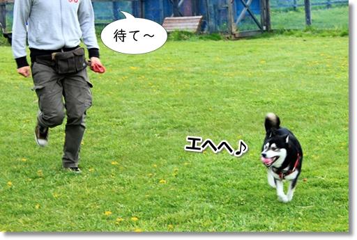 7_20120616025803.jpg