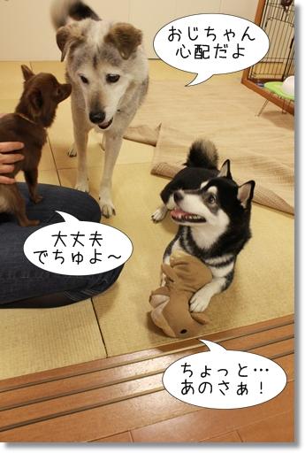 7_20120830104408.jpg