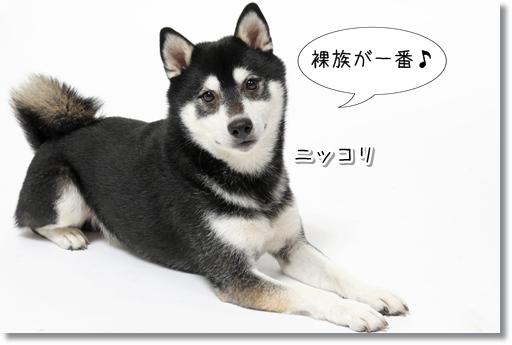 7_20121030050850.jpg
