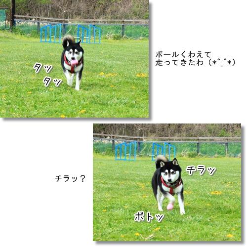 9_20120616025801.jpg