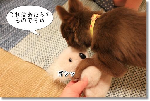 9_20120804194014.jpg