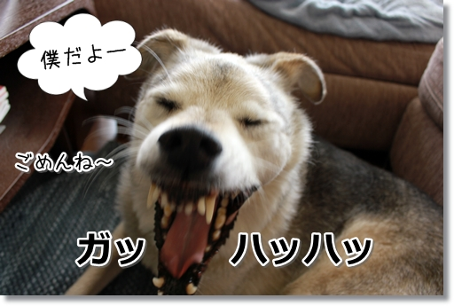 9_20120831171051.jpg