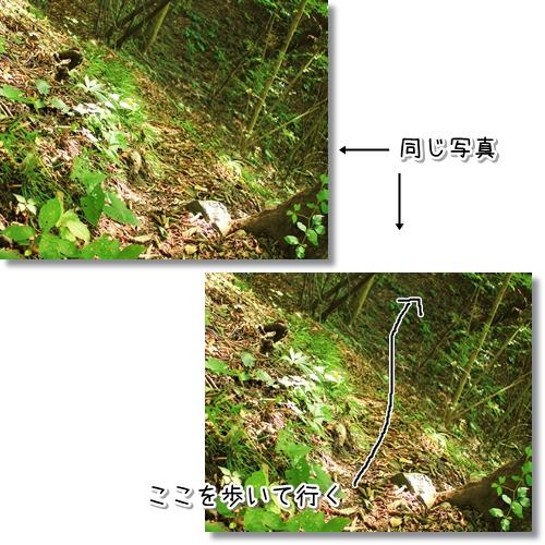9_20120921114830.jpg