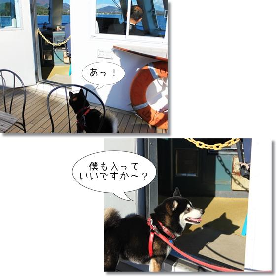 9_20121227164143.jpg